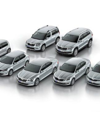 170313 SKODA Model Range 2017 324x400 - Actualité automobile