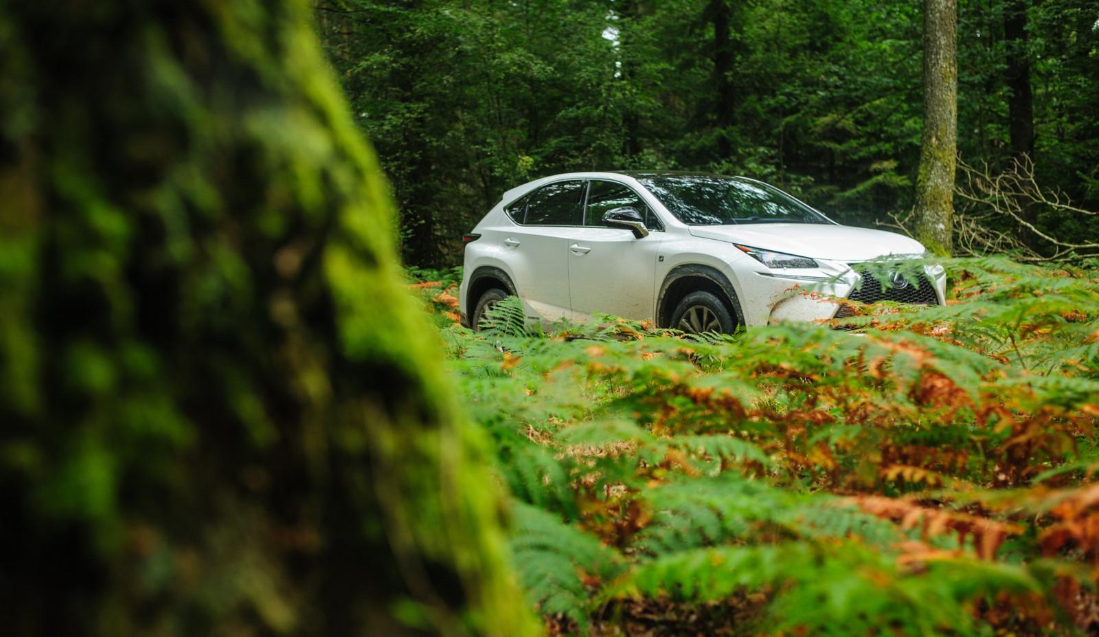 Photo de Essai : Lexus NX300h AWD